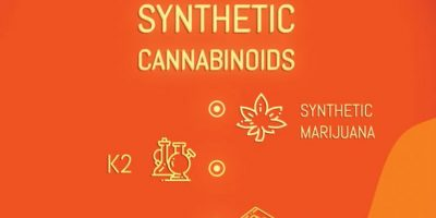 Types of Synthetic Drugs Infographic