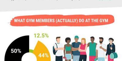 41 Surprising Gym Member Statistics [Infographic]