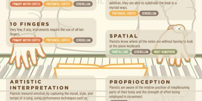 This is Your Brain on Piano [Infographic]