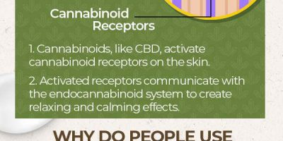 Guide to CBD Body Lotion [Infographic]