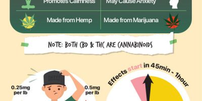 Vegan CBD Edibles [Infographic]