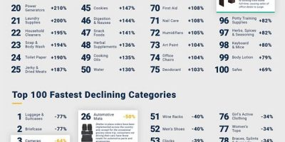 100 Fastest Growing & Declining E-Commerce Categories