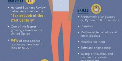 Anatomy of a Data Scientist [Infographic]