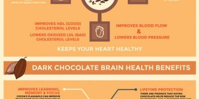 Dark Chocolate Health Benefits Infographic