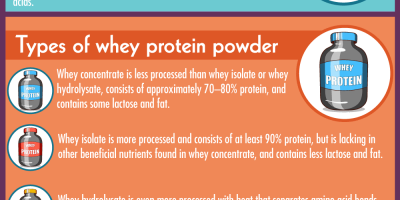 A Guide to Whey Protein [Infographic]