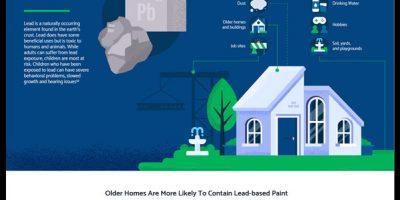 Hidden Household Hazards Infographic