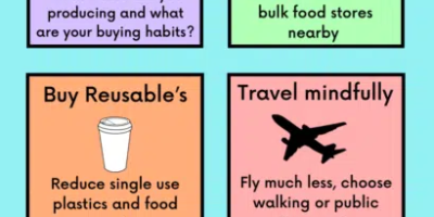 Step by Step Guide To Sustainable Living [Infographic]