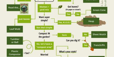 How to Compost {Flowchart}